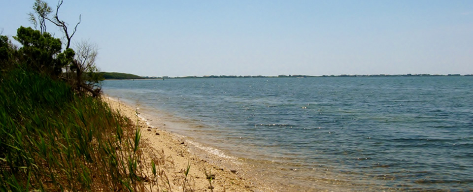 SHINNECOCKBAY