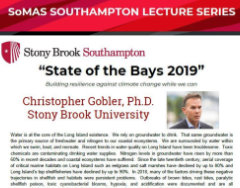 State of the Bays 2019